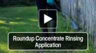 Roundup Concentrate Spray Application